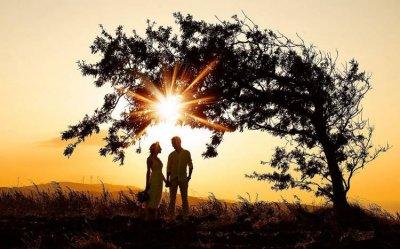Düğün Öyküleri