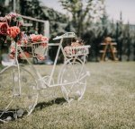Park L'amore Wedding