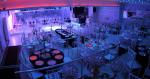 Bağdat Düğün Salonu